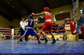 تصاویر بیست و هفتمین دوره مسابقات بوکس قهرمانی جوانان کشور